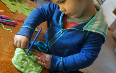 Play Dough: Bugs and Reptiles