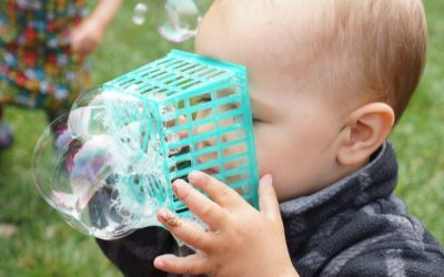 Bubble Baskets