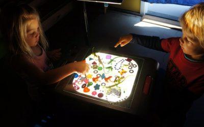 Art & Science: Light